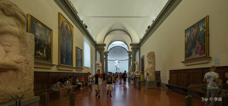 Academy Of Florence Art Gallery3