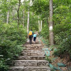 백화산자연보호구 여행 사진