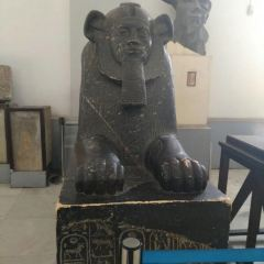 Barcelona Egyptian Museum User Photo