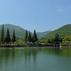 宜興竹海用戶圖片