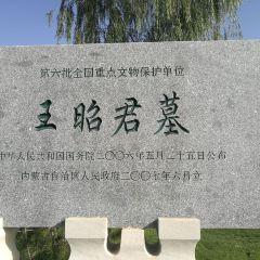昭君博物院用戶圖片