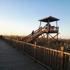鼎翔生態旅遊度假區用戶圖片