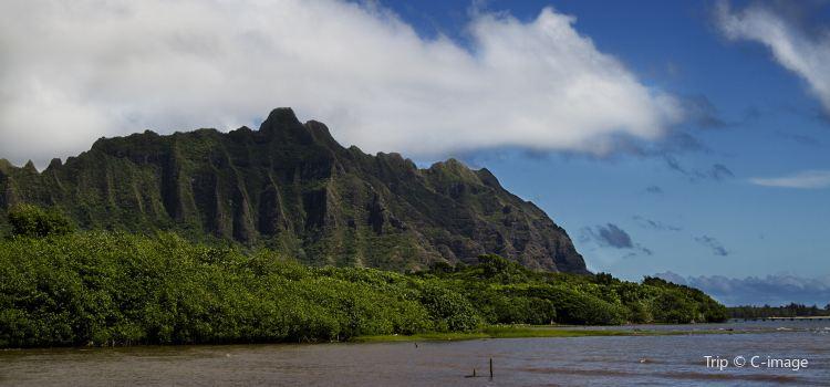 Kahaluu Bay1