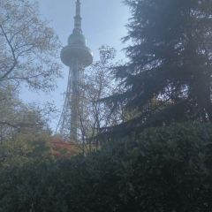 칭다오 TV 타워 여행 사진