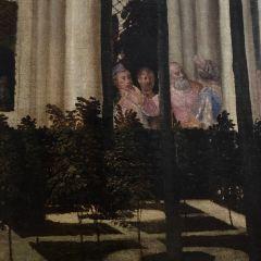 里昂美術館用戶圖片
