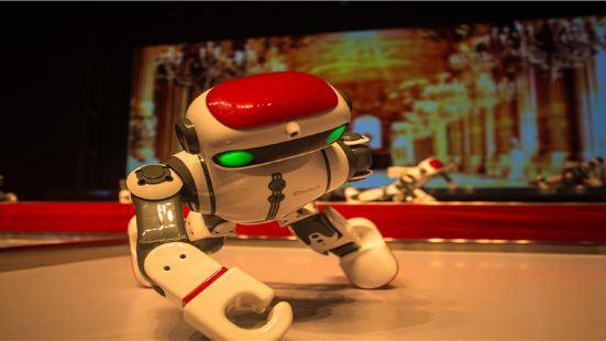華西村機器人世界