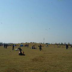 岸上草原用戶圖片