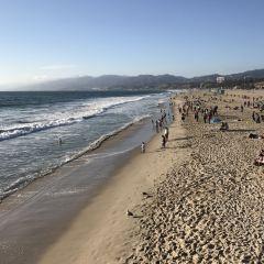Santa Monica Bay User Photo