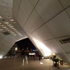 南京保利大劇院用戶圖片