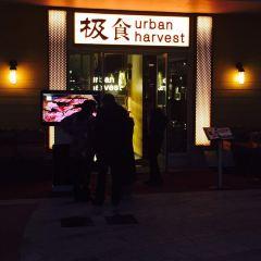 THE URBAN HARVEST 極食(迪士尼小鎮店)用戶圖片
