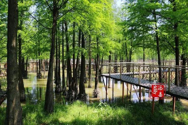 想玩水上降落傘,不必去東南亞了,臨安青山湖景區就有