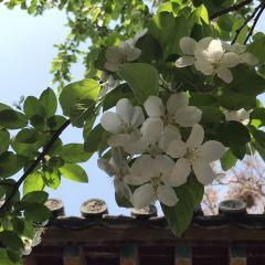 Shihu Garden User Photo