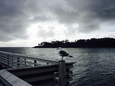 William Randolph Hearst Memorial Beach