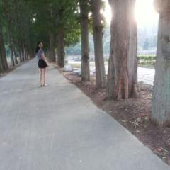 南沙湖風景區用戶圖片