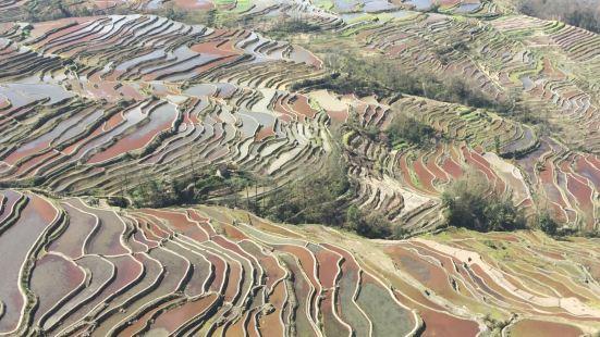 Laohuzui Terraced Field
