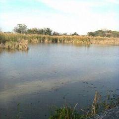 Reserva Ecológica Costanera Sur User Photo
