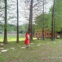 Liangfengjiang National Forest Park User Photo
