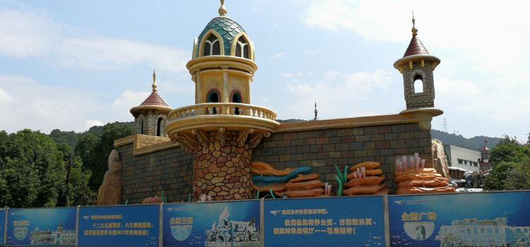 항저우 창치아오 극지해양공원3