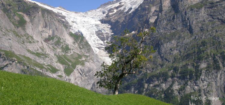 Oberer Gletscher1