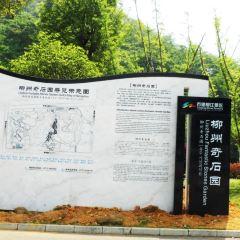 Malushan Qishi Expo Scenic Area User Photo