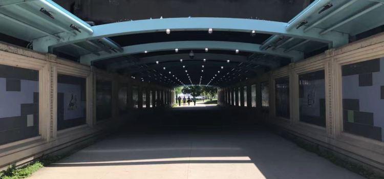 Lake Shore East Park2
