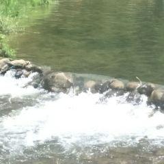 白雲溪漂流用戶圖片