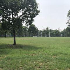 江海清風園用戶圖片
