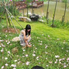 Kunlun Pass User Photo