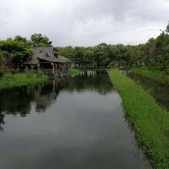 Pukongjian User Photo