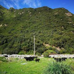 Niangniang Mountain User Photo
