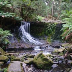 Horseshoe Falls User Photo