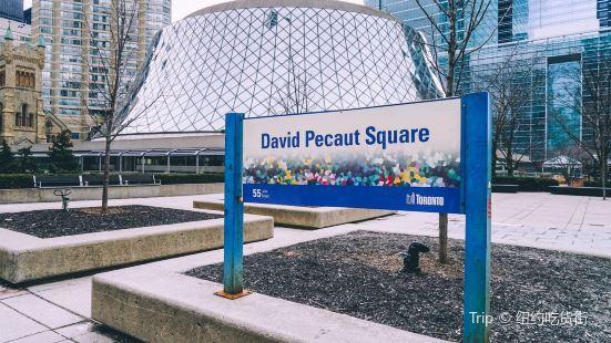 David Pecaut Square