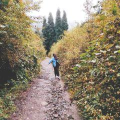 鶏冠山のユーザー投稿写真