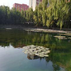 新疆國際博覽中心用戶圖片