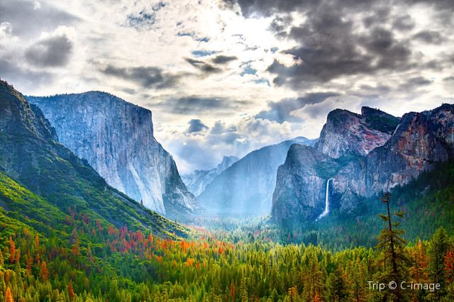 Yosemite National Park: Where Beauty Never Fades