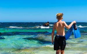 Rottnest Island,Recommendations