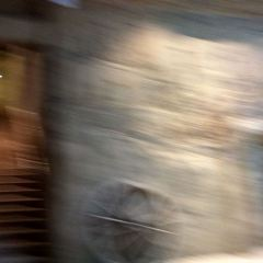 五道林用戶圖片