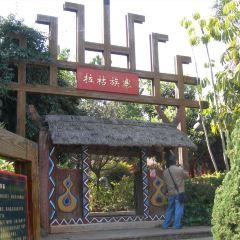 Yunnan Grand View Garden User Photo