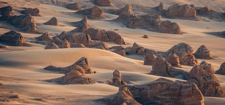 南湖沙漠1