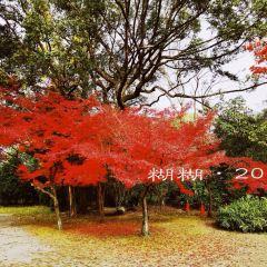 Shosei-en Garden User Photo