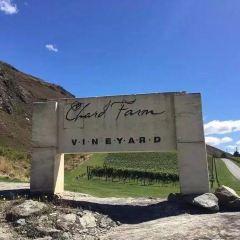 Chard Farm Winery User Photo