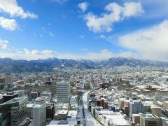 那须町+富士山+美瑛町等多地9日游