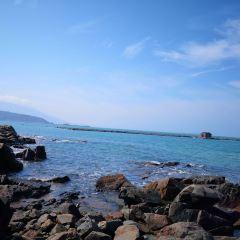 東癢島用戶圖片