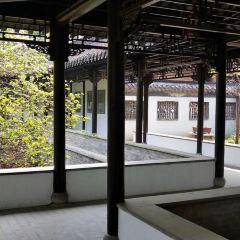 Viburnum Temple User Photo
