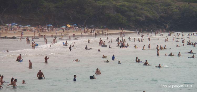 Hāpuna Beach State Recreation Area1