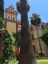 피카소 미술관 여행 사진