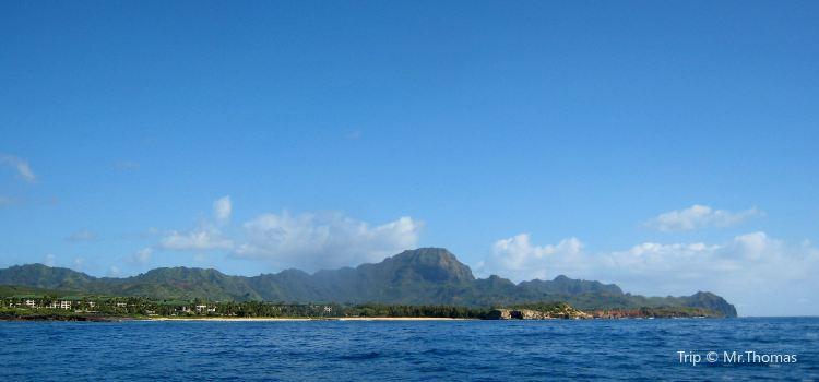 Kauai Sea Tours   Tickets, Deals, Reviews, Family Holidays