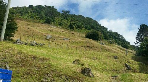 Mount Maunganui Base Track