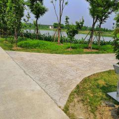 Baiyangdian Wangyue Island No. 11 Courtyard User Photo