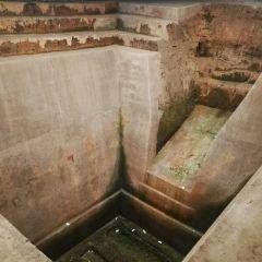 馬王堆漢墓のユーザー投稿写真